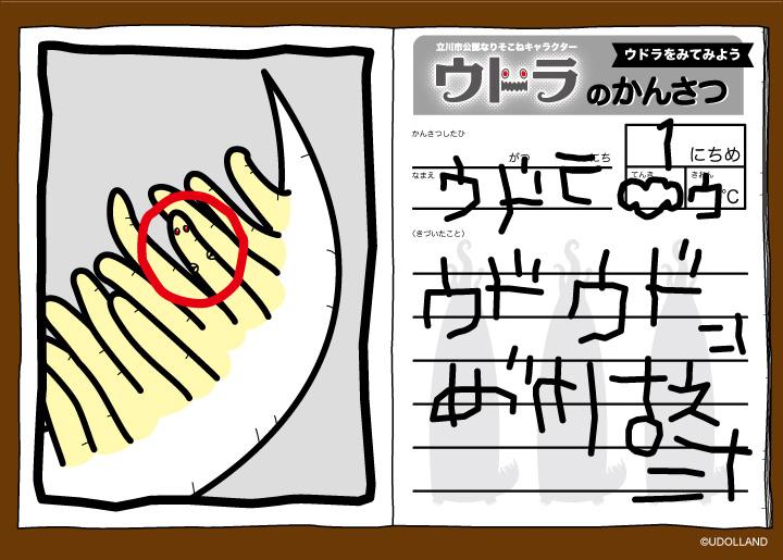 udolla_kansatsu2